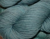SALE! Studio June Yarn Andrea Mae DK, Superwash Merino, DK/Light Worsted Weight, Color: Frozen Pond lot B