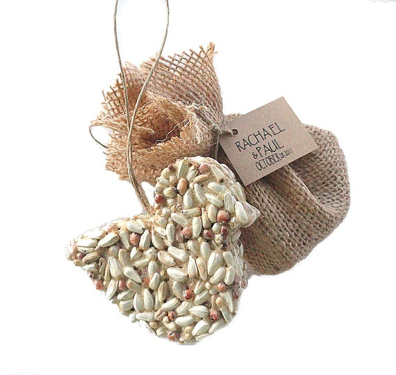 Baby Girl Christening Favors Glass Ornament: Bird Seed Ornament 1st Birthday Party Favors Eco By