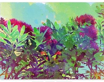 NZ pohutukawa tree print, watercolor fine art, flower wall art, crimson and green foliage home decor, new zealand nature print