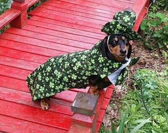 Irish  costune for Hollywood  Movie Wiener Dog Internationals