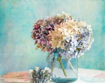 hydrangea fine art print, home decor,pastel photograph,aqua,purple,nature,flower,floral,shabby chic,square print