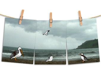 Seaside Friends, art set, triptych prints, sea birds, ocean art,beach house,pelican seagull puffin,childrens room decor,nautical nursery art