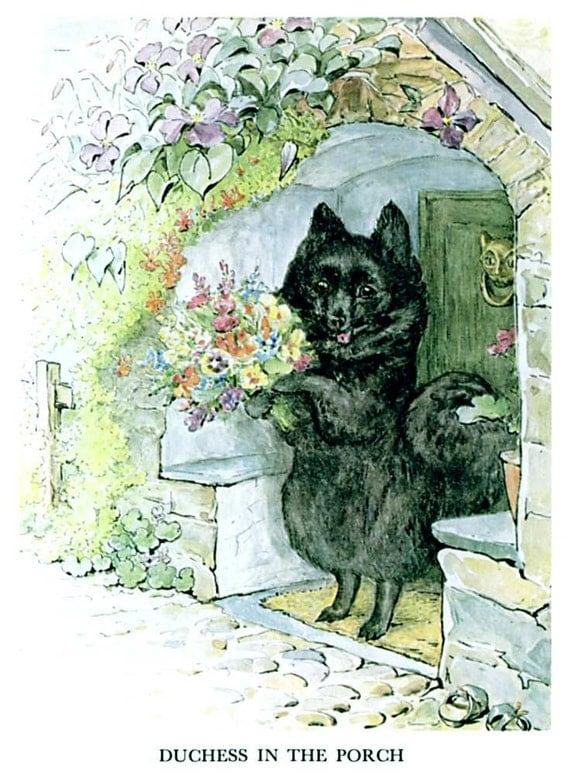 Shop Dog And Cat Beatrix Potter