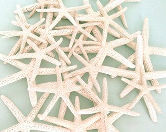 "White Natural Starfish - 12 Mixed Sizes 2""-5"" - Natural White Finger Starfish *Top Quality* craft shells beach weddings star fish"