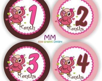 Baby Stickers - Baby Month Stickers - Baby Girl Monthly Stickers - Baby Shower Gift - Baby Owl Baby Month Stickers - Baby Bodysuit Stickers
