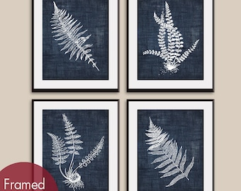 Ferns (Series D4) Set of 4 - Art Prints (Featured in Denim Jeans) Botanical Flower Art Prints