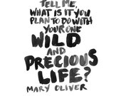 12X18 PRINT | Mary Oliver Quote