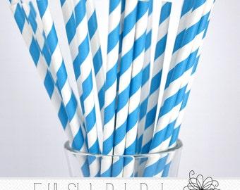 Blue Stripe Paper Straws- Pack of 25 Straws
