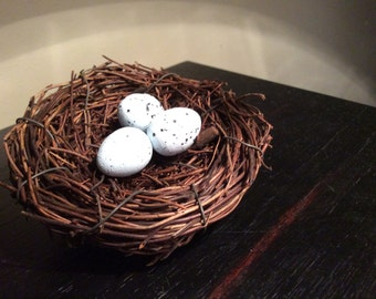 Petite Spring Birds nest with light blue spotted eggs