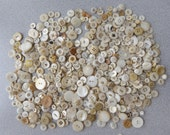 """Several hundred assorted style white vintage buttons ranging is size from 3/8"""" to 1"""""""