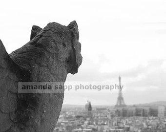 Gargoyle's View of the Eiffel Tower