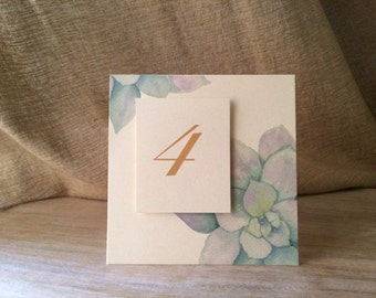 Succulent Table Numbers - Wedding and Events  - Table Number Tent  -Party Decorations - Seating