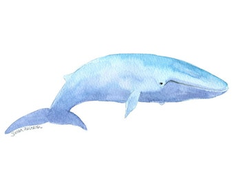 Blue Whale Watercolor Painting - 10 x 8 - Giclee Print - 11 x 8.5 - Ocean Sealife Painting