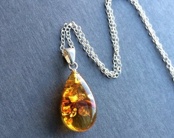 Sale Baltic Amber Pendant Sterling Silver Necklace 12 to 36 inches long