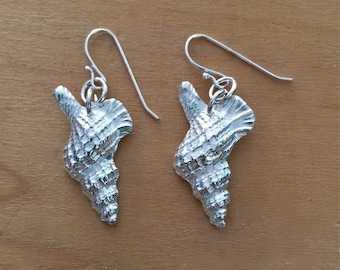 shell earrings, silver earrings, silver shell earrings, surfer earrings, beachcomber, summer wedding, bridesmaid gift