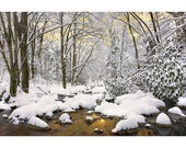 Snowy River Sunset, Great Smoky Mountains, Fine Art, Photo Print, Nature Photography, Snow, Winter, Christmas, Forest, Appalachian, Gold