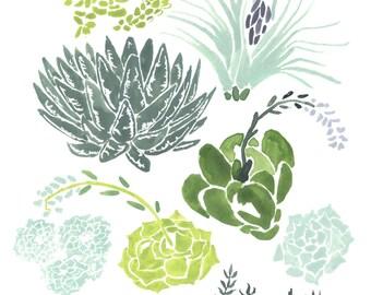Succulents Giclee Art Print 8 x 10