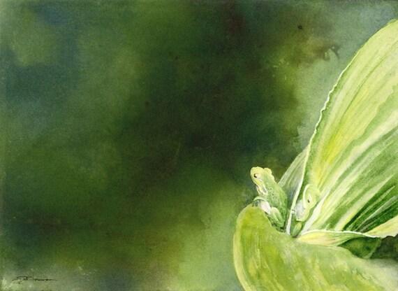 Print open edition Florida green tree frog portrait Surveying Her Domain bowman corn stalk