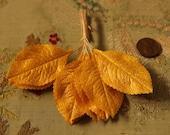 1 dozen Vintage gold millinery leaves  wired stem 12 piece flower making supply 1940 1950 1960 3