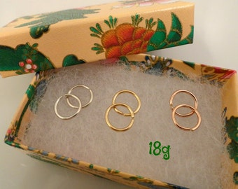 Tiny 18g Hoops in Three Metals