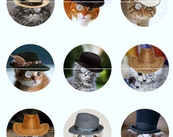 Cat Magnets Pins, Cats in Hats, Costume Cats, Party Favors, Magnet Gift Sets, Pin Gift Sets, Cat Lovers Gift