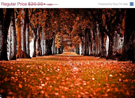 FLASH SALE Red Fall Corridor Photographic Art Print, Wall Art for Home decor, 12 Sizes Available from Prints to Mounted Canvas