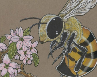 Honey Bee & Apple Blossom