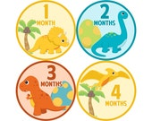 Baby Stickers Monthly, Boys Baby Bodysuit Stickers, Monthly Stickers, Baby Month Stickers, Monthly Bodysuit Stickers, Dinosaurs (B166)