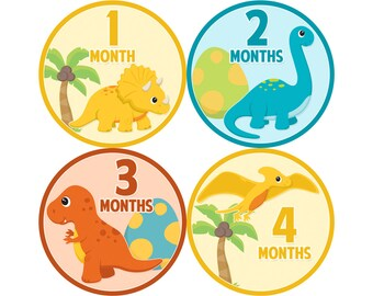 Baby Announcement, Monthly Baby Stickers, Monthly Baby Photos, Baby Gift, Baby Month Stickers, Monthly Stickers, Dinosaurs (B166)