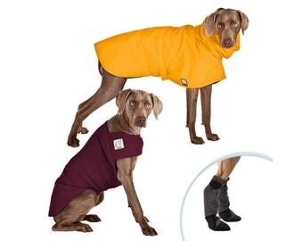 WEIMARANER Moderate Climate Special, Dog Rain Coat, Rain Coat, Waterproof Rain Jacket, Dog Sweater, Fleece Sweater, Dog Booties, Winter Boot