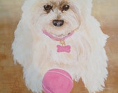 Westie at Play!  Westie Lovers need a portrait of your pup.