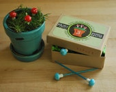 Miniature mushroom plant picks and Flower pot