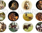 STICKERS, Horses, Horse decor, Western decor,Envelope Seals, Art, Ellen Strope, Repositionable adhesive, gifts, Fun stickers