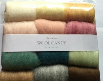 Japanese Hamanaka Candy Felt Wool 12 color Set