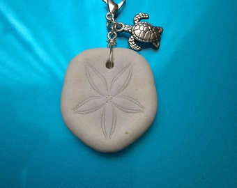 Sand Dollar with sea turtle diffuser