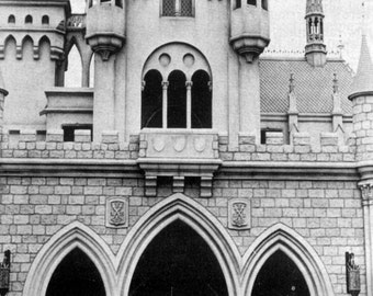 WALT DISNEY through Castle Poster | 24 x 36 Inch | Disney World | Mickey mouse | Movie Poster |
