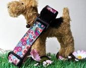 Dog Collar - Paisley Pup -  50% Profits to Dog Rescue