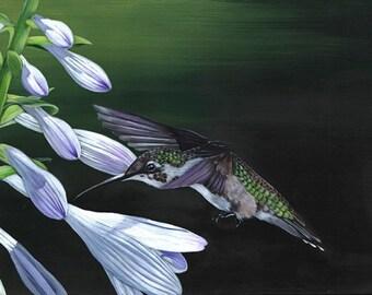 Hummingbird painting PRINT of acrylic painting A4 size print wall art print - bird art print
