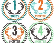 FREE GIFT, Woodland Baby Month Stickers Boy, Deer Antlers, Monthly Baby Stickers, Milestone Stickers, Chevron, Teal, Orange, Brown, Mint