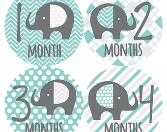 FREE GIFT, Elephant Monthly Baby Stickers Boy, Elephant Baby Month Stickers Boy, Baby Month Stickers Boy, Monthly Stickers Boy, Teal, Gray