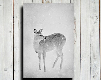 Deer in Snow - Deer photography - Deer art - Animal photography - Nature photography - Rustic decor