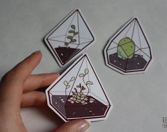 terrarium fridge magnets