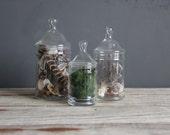 Medium Glass Apothecary Jar