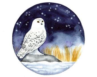 Snowy Owl Original Watercolor painting Owl art illustration