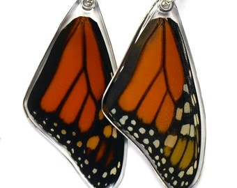 170T Real Monarch Butterfly Wing Pendant (Danaus plexippus) (top/fore wing)