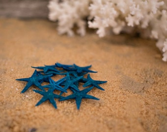 Beach Decor Turquoise Starfish 10 small hand dyed starfish for Nautical Decor, Beach Weddings or Crafts