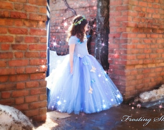 NEW Cinderella Inspired Tutu Dress