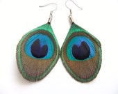 Peacock Feather Earrings, Small Trimmed Peacock Earrings, Feather Earrings, Earrings Peacock Feather
