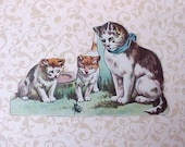 Darling Victorian Scrap: Mama Cat with Kittens Watching Beetle