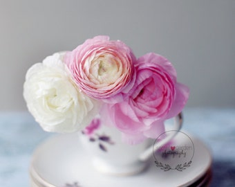ranunculus photography print, flower photo, teacup photo, fine art photography, floral art, wall art, pink home decor, nature photography